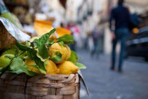006. Limoni di Amalfi
