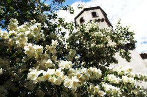 Villa Cimbrone Torre